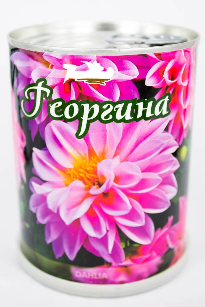 Георгина - цветы в банке с логотипом