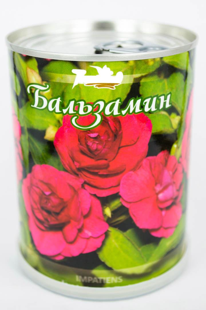 Бальзамин в брендированной баночке