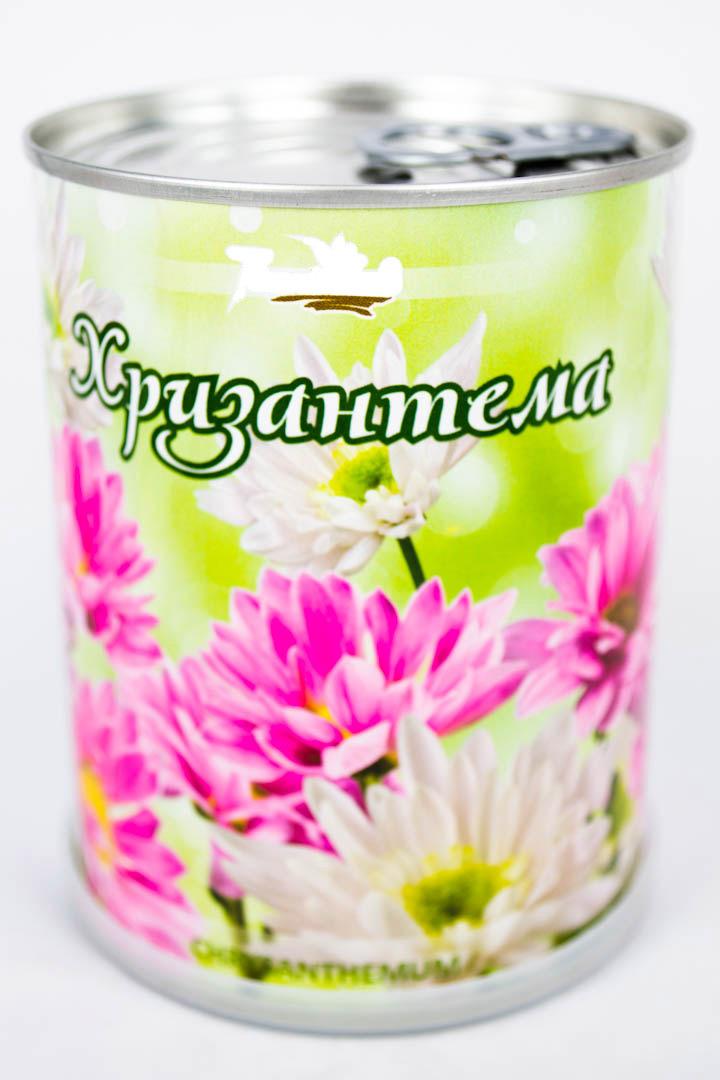 Хризантема - цветы в банке с логотипом