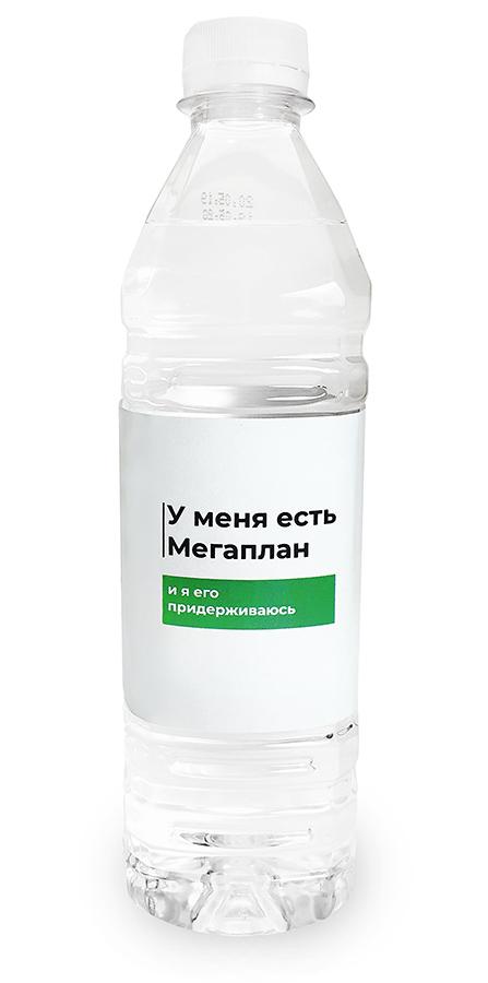 Королевская вода 0,5 литра с символикой Мегаплана