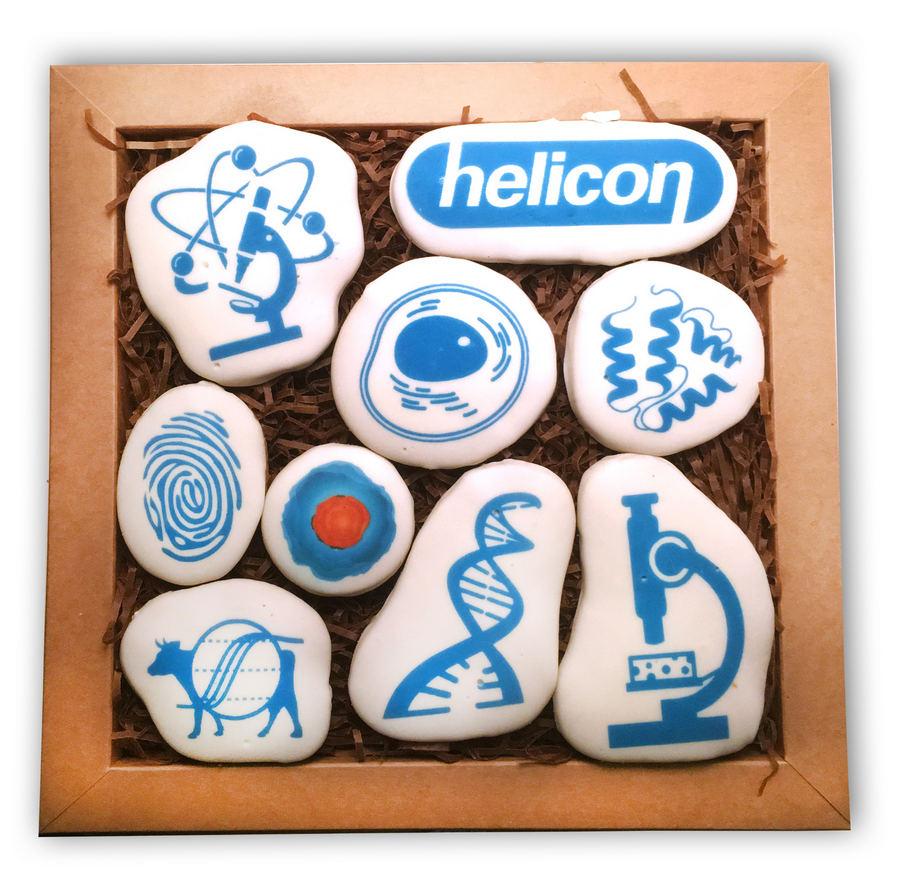 Пряники медицинской тематики с логотипом helicon