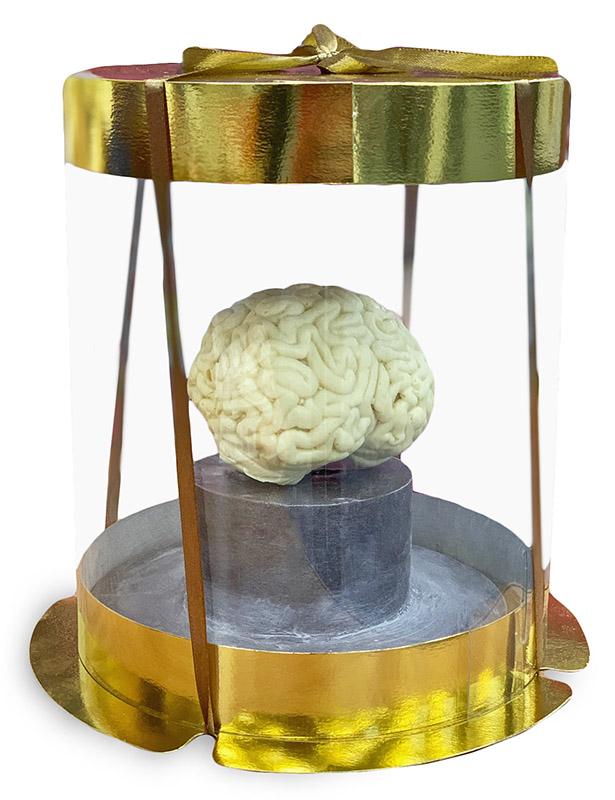 Мозг из белого, молочного или темного шоколада с логотипом