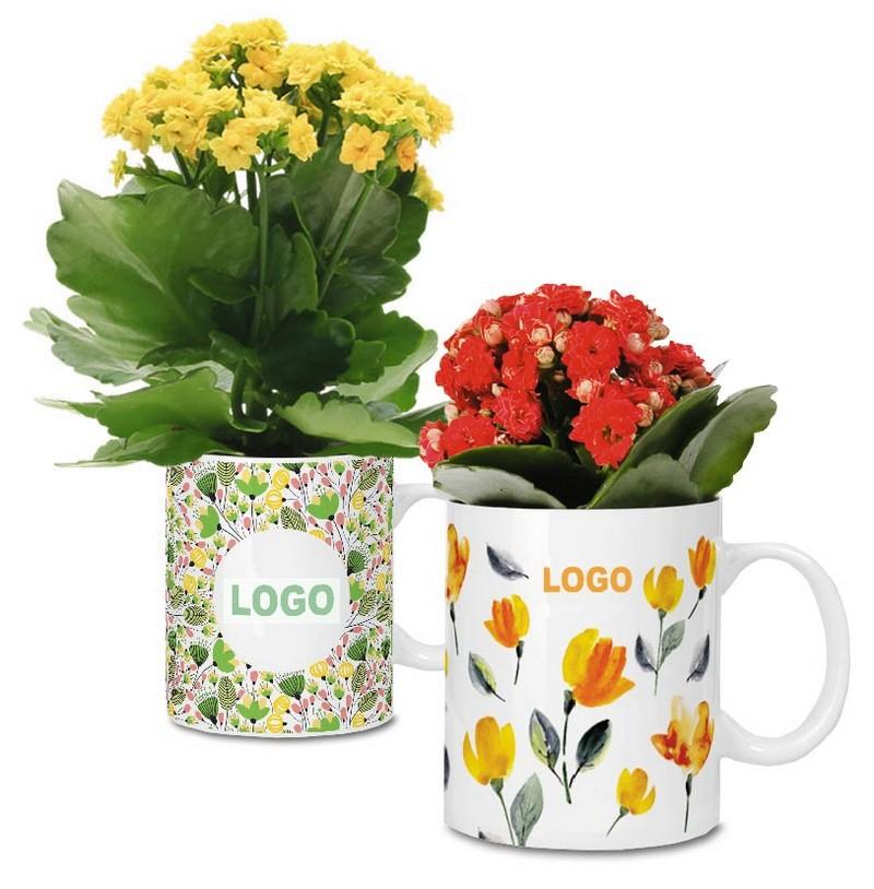 Живые цветы в кружках с логотипом на 8 Марта