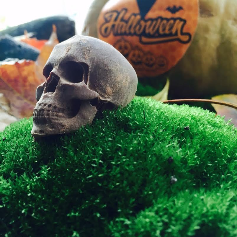 Фигурный череп из шоколада