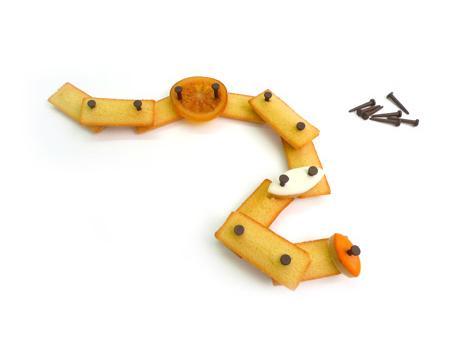 Гвозди из шоколада. Источник фото stephane-design.com
